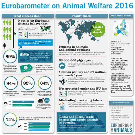 8 Ways To Support Animal Welfare by Eurobarometer 2016 Proves Eu Citizens Overwhelming Support