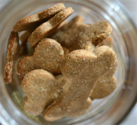 peanut butter banana treats 20 pet treats that will make tails wag and kittens purr autostraddle