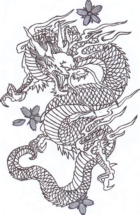 dragon tattoo drawing drawings 2 by v fan