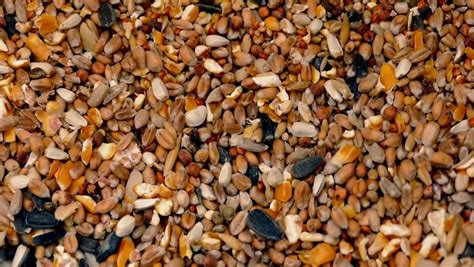 grain spill stock footage video 2247868 shutterstock