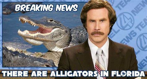 News Meme - 25 best ideas about florida meme on pinterest weather