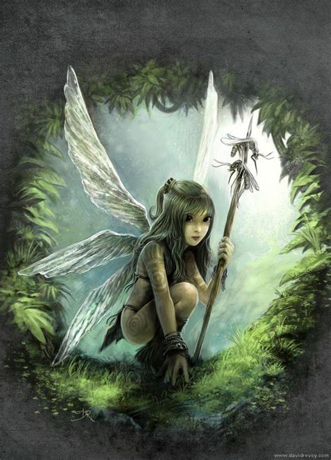 fairies and fantasy by fantasy fairy art images