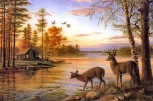 John Deere Wall Murals two deer drink water on the river when sunset desktop