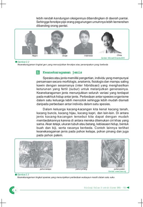 Buku Siswa Biologi Kelas Xiiyrama Widya buku biologi sma kelas x