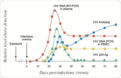hiv test ab wann laboratory and biomedical science interpretation