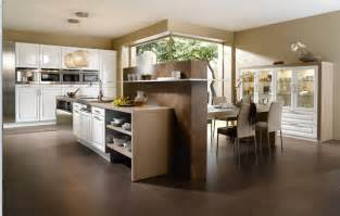 Kitchen Cabinets Remodeling Ideas Design Ideas For Above Kitchen Cabinets Decobizz Com