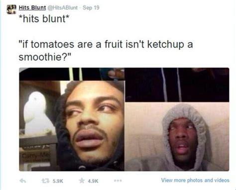 Meme With Two Pictures - the best of stoner thoughts 11 pics daily lol pics