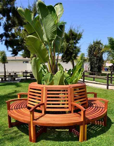 tree benches outdoor redwood outdoor tree bench custom redwood seating