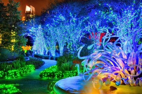 gorgeous holiday lights at atlanta botanical gardens