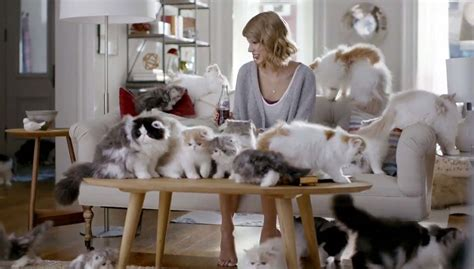 taylor swift cat video taylor swift with cat famous pictures in hd 4k
