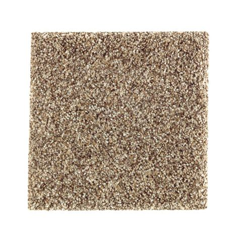 petproof carpet sle sachet i color squirrel nest