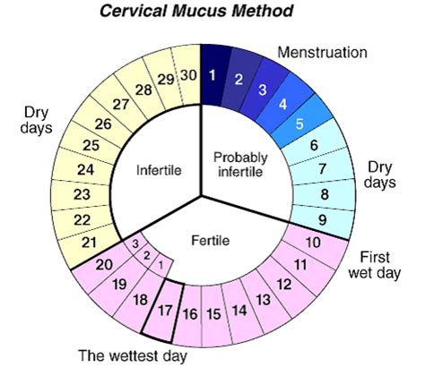 fertility awareness for birth