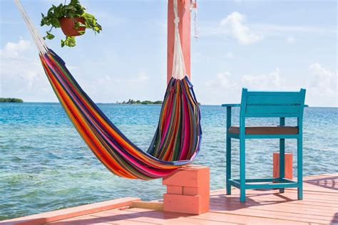 bird island belize airbnb airbnb now offers entire tropical islands for rent