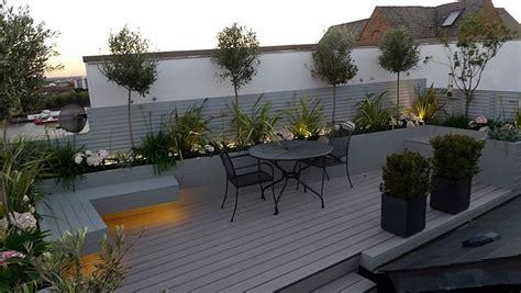 piante sempreverdi per terrazzo piante per terrazze piante da terrazzo piante per terrazzo