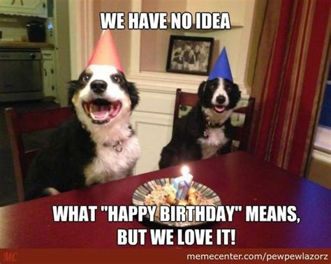 Puppy Birthday Meme - funny birthday meme google search birthday pinterest