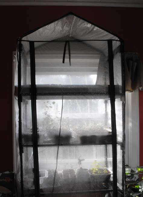 mini indoor greenhouse with light mini greenhouse starting seeds indoors frugality