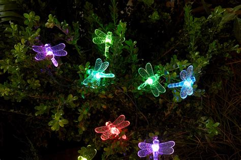 Decorative Solar Lights Outdoors Essential Garden Solar Dragonfly String Lights 20 Ct Outdoor Living Outdoor Lighting