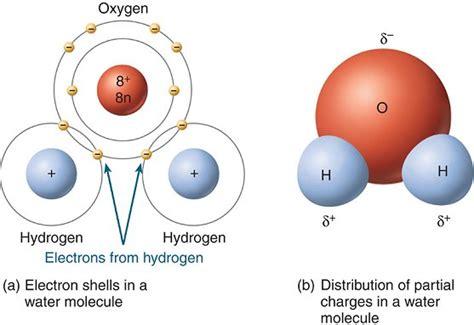 diagram of water molecule madeye s smarticle blogs september 2011