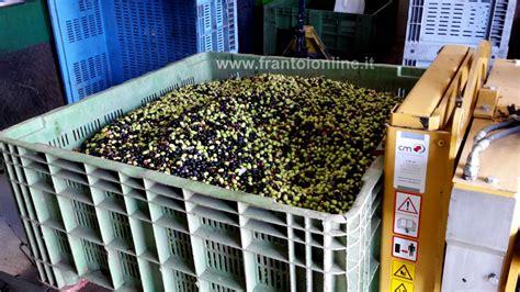 cassette per olive usate contenitori per il trasporto olive casse bins e ceste