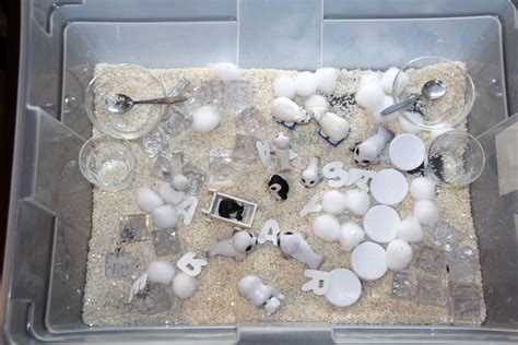 materials for sensory table sensory table ideas with more creative materials