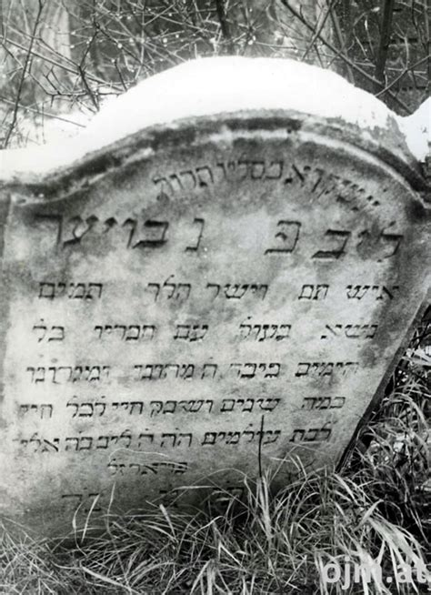 Was Blüht Im April 5606 by Bauer L 246 B 20 Dezember 1845 Koschere Melange