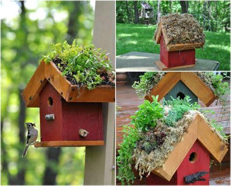 vogelhaus bauen anleitung vogelhaus aus holz anleitung denvirdev info