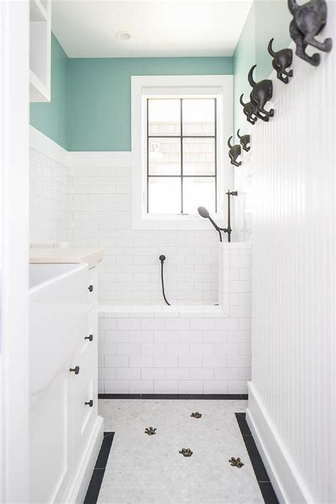 Mudroom Dog Shower Design Ideas