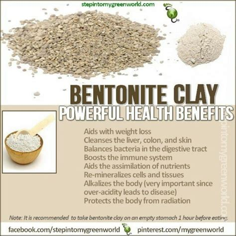 Benefits Of Bentonite Liquid Detox by 15 Best Images About Health Benefits Of Bentonite Clay On