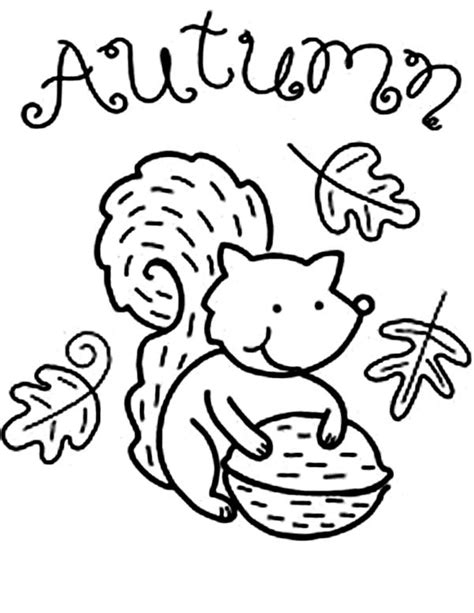 autumn animals coloring page autumn animal squirrel coloring pages batch coloring
