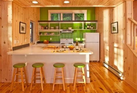 green kitchen paint ideas changing mood of modern kitchen design and decor with