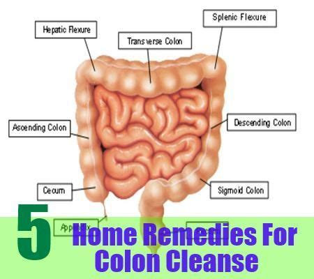 Home Cure For A Digestive And Blood Detox by 17 Best Images About Colon Cleanser On