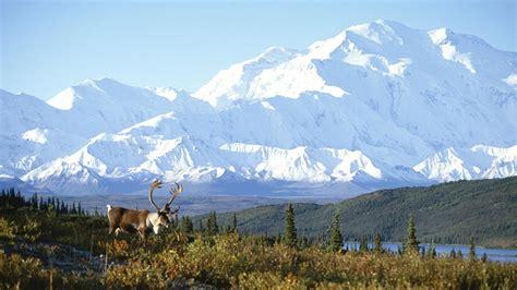 Background Check Alaska Free Alaska Wallpaper 19773 1920x1080 Px Hdwallsource