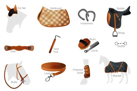 Horse Saddle by Vector Equestrian Horse Equipment 13 It Design Bundles