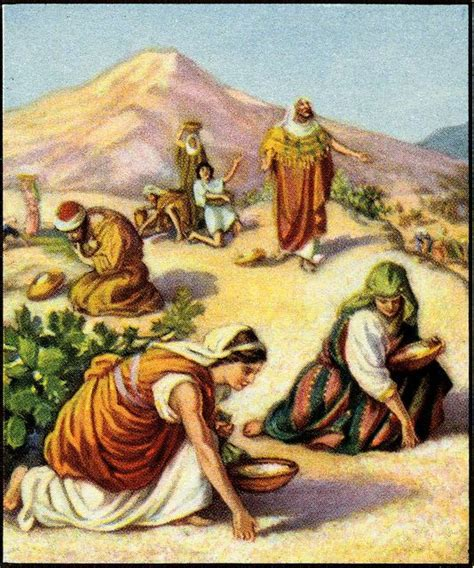 31 days of gleaning with ruth questioning my way through a famine season books gathering manna