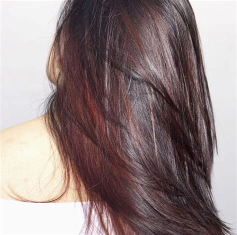 best drugstore hair color for grey coverage best drugstore hair color for gray hair 219 best trend