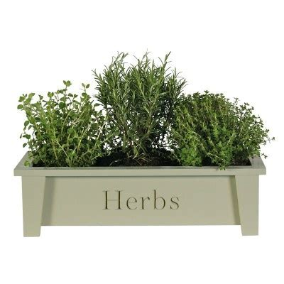 herb window box indoor 17 best images about window boxes indoors and out on