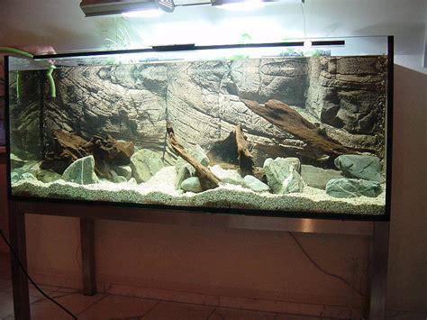 Aquarium Ohne Pflanzen Einrichten 6848 by Ohne Pflanzen Aufbau Steine Wurzeln Mit Wasser