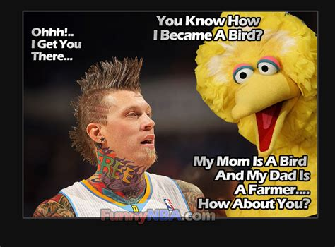 Andersons A Stupid by Big Bird Quotes Quotesgram