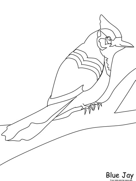free coloring pages of blue bird