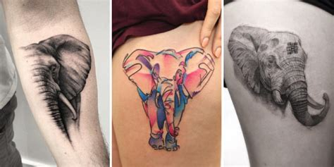 pink elephant tattoo reviews 39 latest elephant tattoos collection