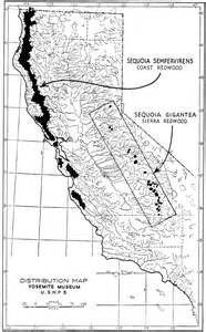sequoia trees in california map map of sequoias pictures to pin on pinsdaddy