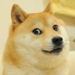 Doge Meme Template - doge blank template imgflip