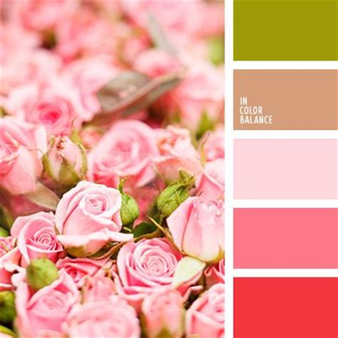 colors that match pink color pallets colors and pink roses on pinterest