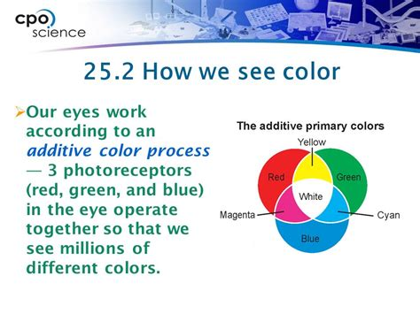 how we see color 25 2 the human eye the eye is the sensory organ used for