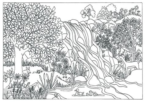 coloring book by nature for adults relaxation don juan s coloring books books 13 best images about tricia griffith coloring pages on