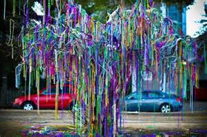 mardi gras trees mcneedlesmusings just another site