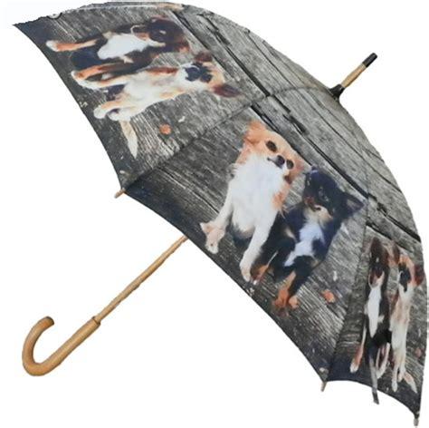 Deko Idee 24 by Regenschirm Stockschirm Chiwawa Chihuahua Familie