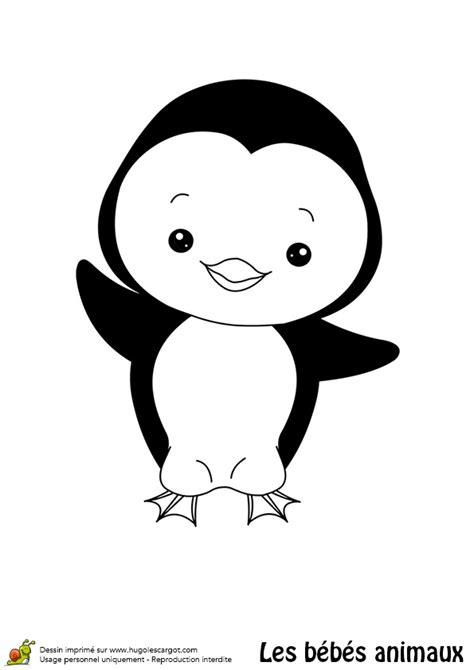 Coloriage Du Plus Migon De Tous Les Pingouins