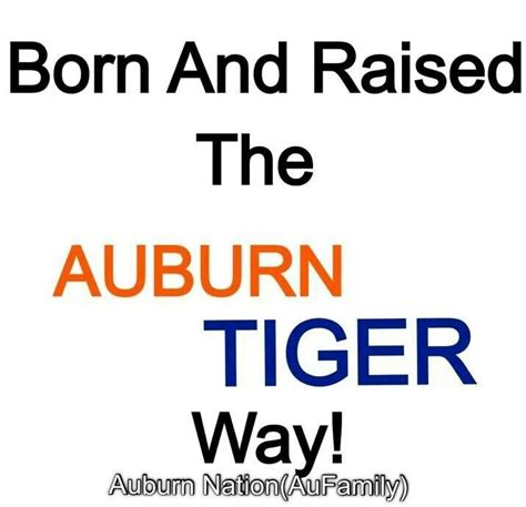 congratulations to the auburn team and c by les auburn quotes like success