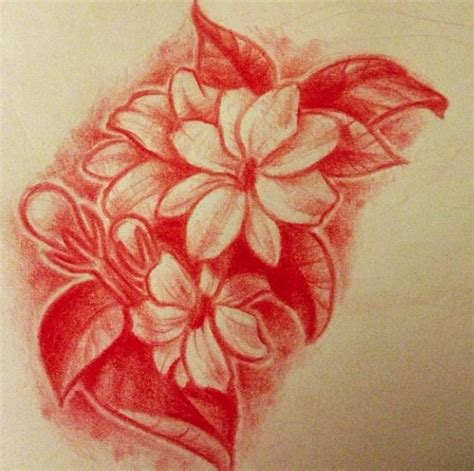 sampaguita drawing cliparts co